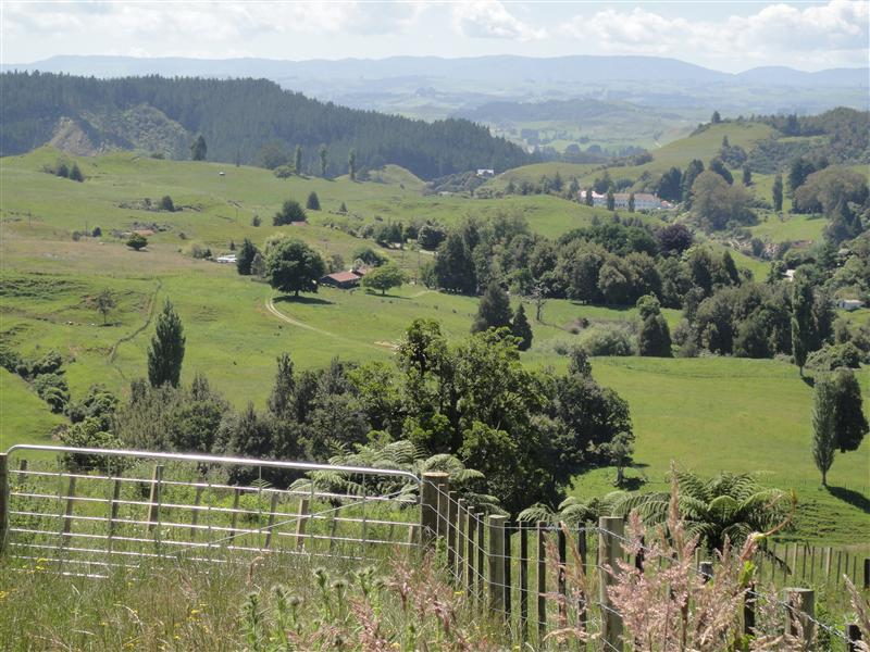 Photo from AeonHunter in New Zealand