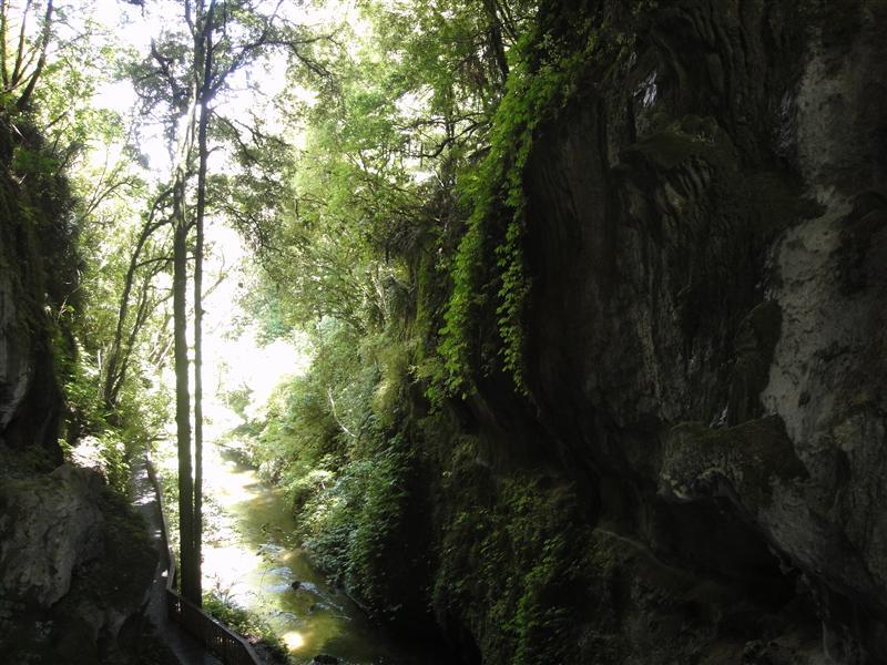 Under the Land Bridge
