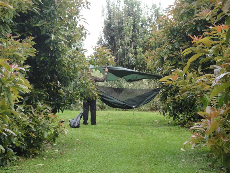 Sleeping in the Avocado Grove