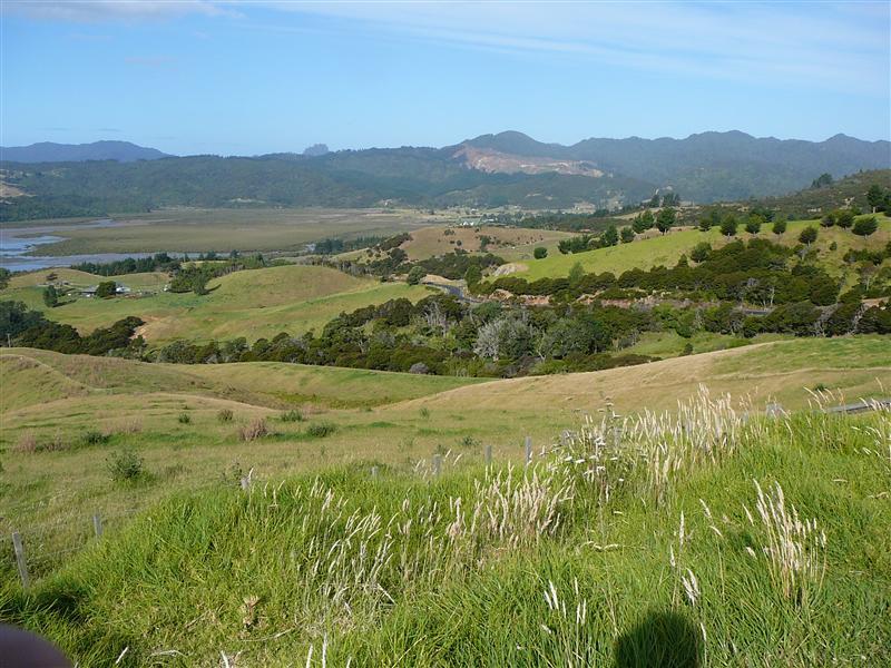 Photo from Coromandel, New Zealand