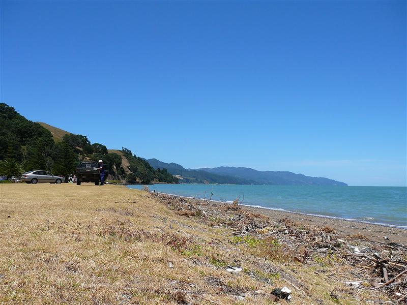 Photo from Waikawau, New Zealand