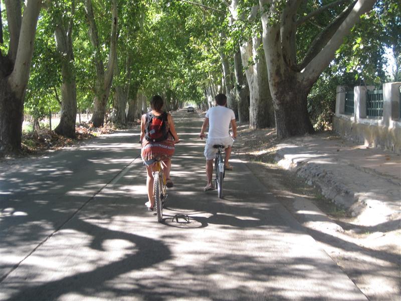 Photo from Mendoza, Argentina