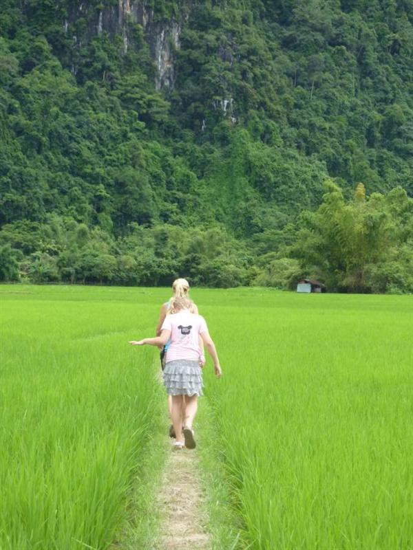 Vang Vieng - Walk through the rice fields