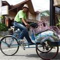Yogyakarta - Becak driver