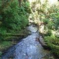The Waitomo Creek