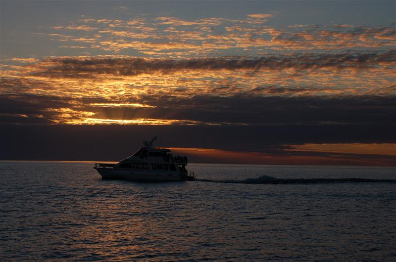 All good things come to an end; sunset on the way back from whale watching