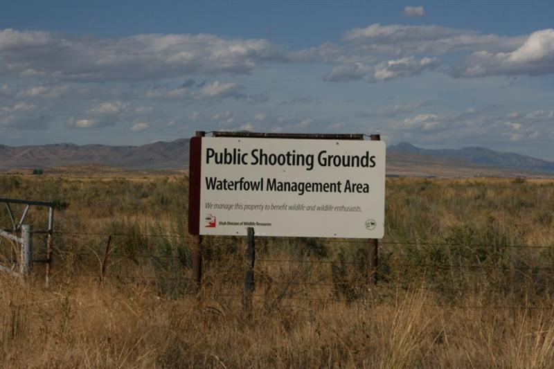 It's OK to shoot the Public?
