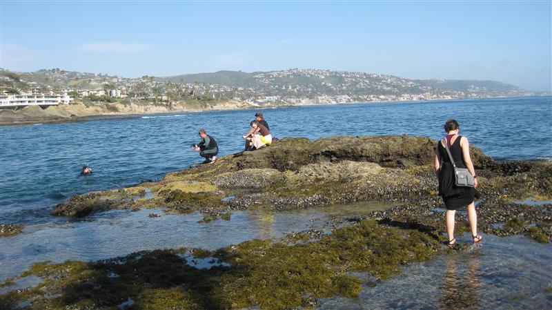 Kids scuba diving in frigid waters