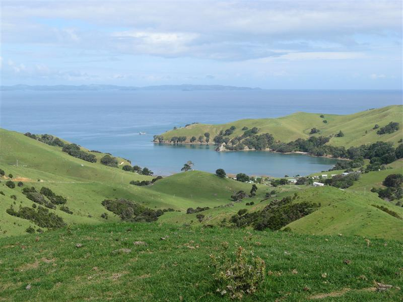 View from the highway on our way to Coromandel