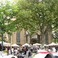 The Paddington Saturday Market