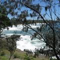 Views of the coast from Noosa National Park
