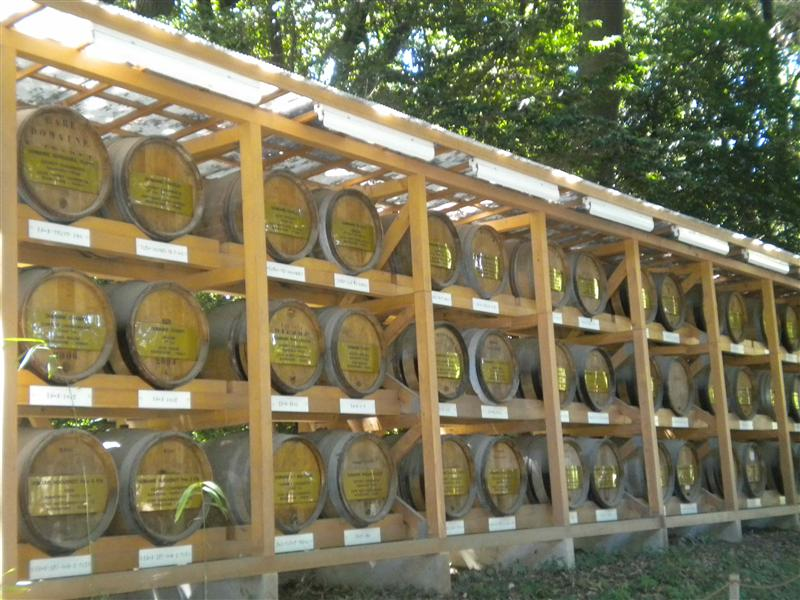 Meiji shrine wine