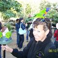 When mom was feeding the lorikeets, one of them landed and perched itself on her head!