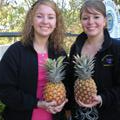 Kelly & I with our pineapples! They were welcome gifts from the Wamuran School District - a big pineapple growing community.