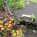 Virgin's grave the lava missed completely