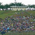 Grass hill stand