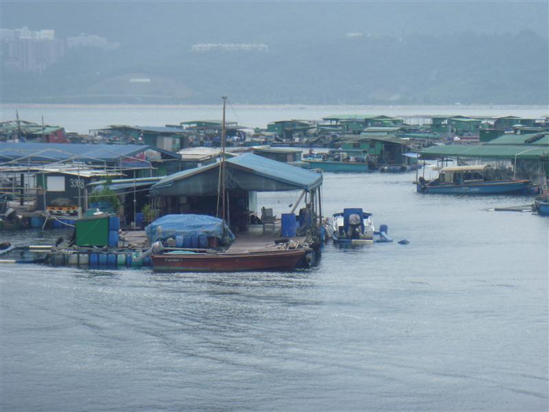 Sam Mun Tsai Fishing farm