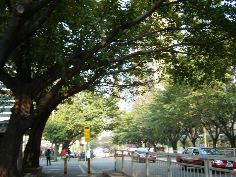 Streets near Diwang