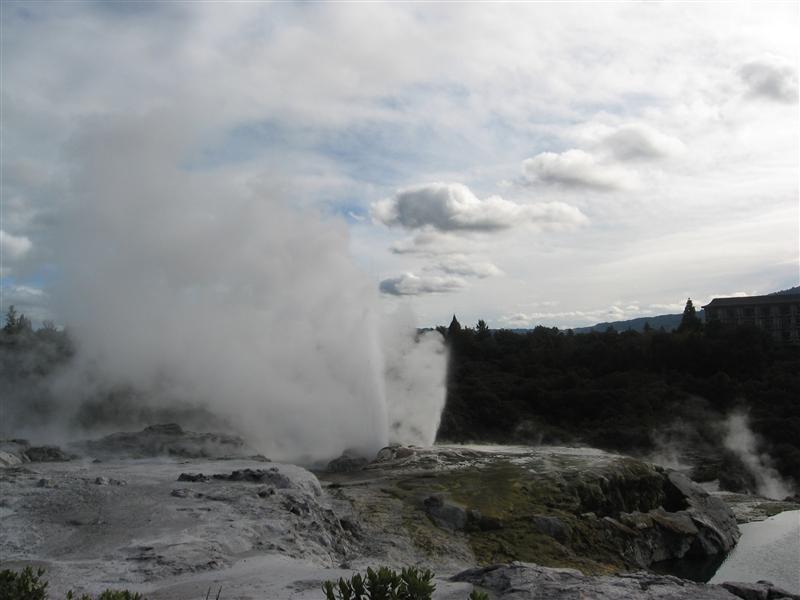 Pohutu geyser erupting in Te puia thermal reserve
