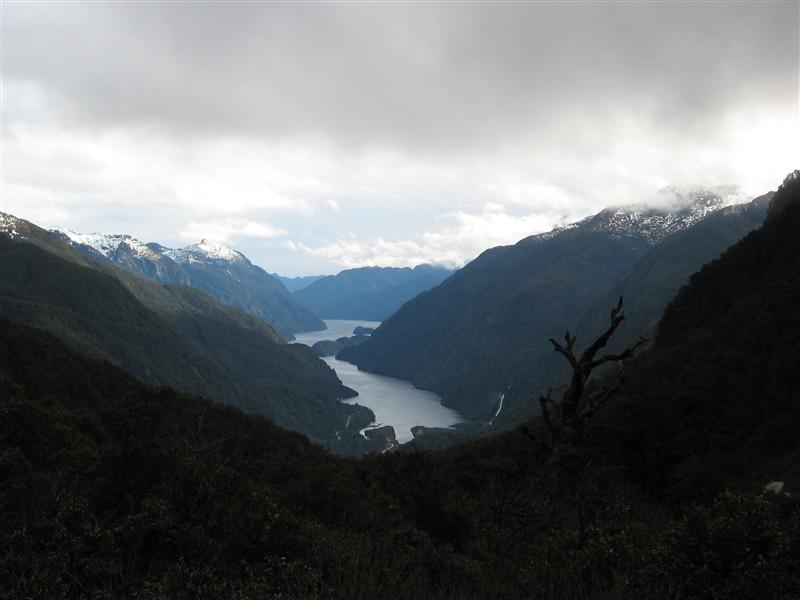 Doubtful Sound from the lookout point