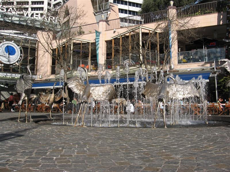 Some birds around a fountain in Darling Harbour