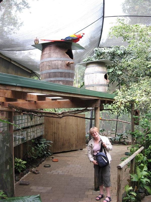 Sue, the bird-whisperer