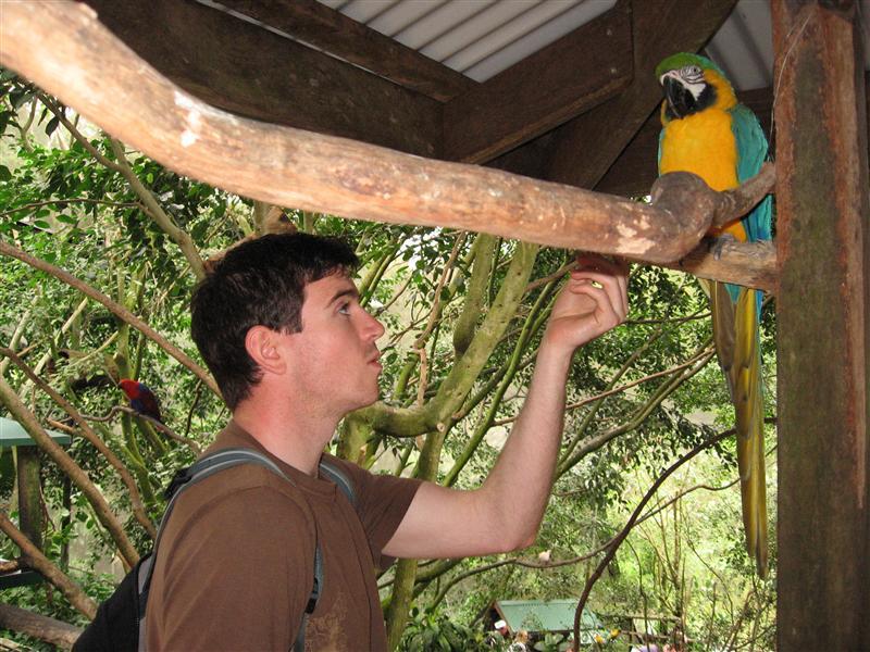 Ollie feeding a vicious parrot