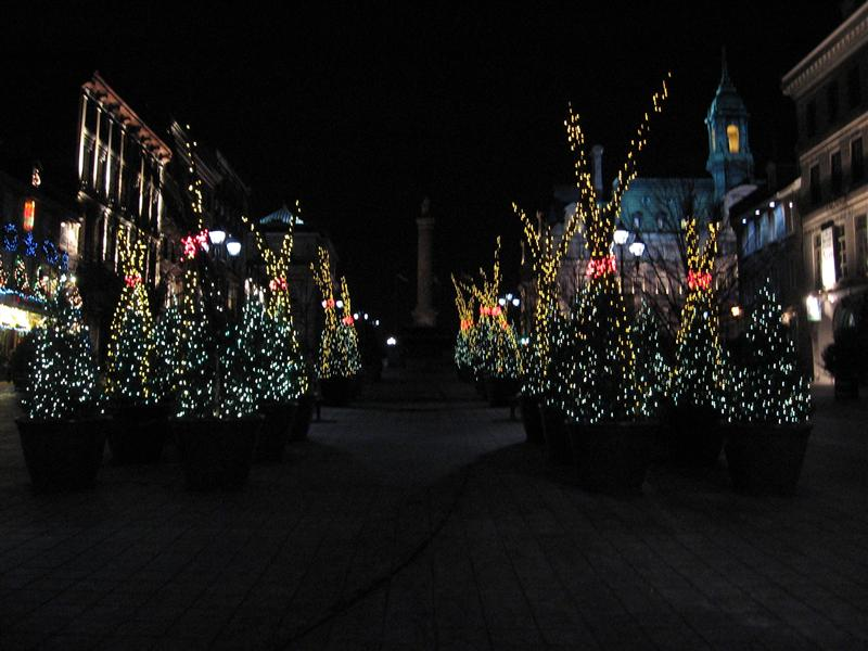 Christmas trees in Jacques Cartier Square