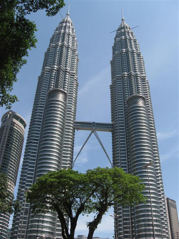 Petronas Towers with a tree in front