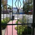 the view from my door