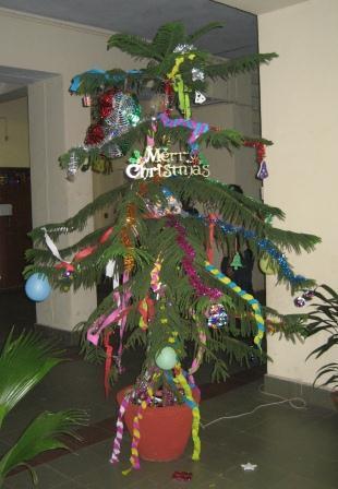 Indischer Weihnachtsbaum