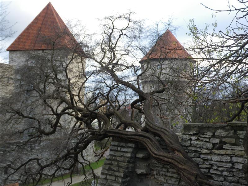 Photo from Tallinn, Estonia