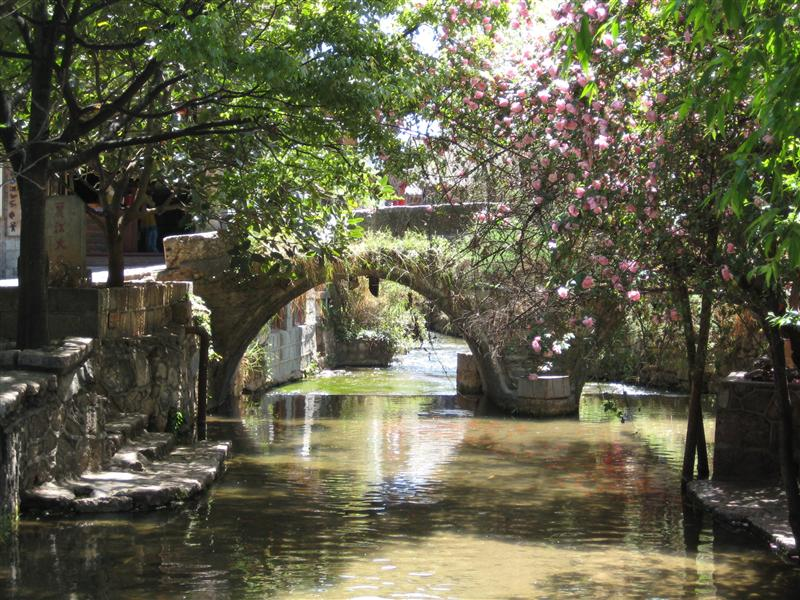 Stone bridge and cherry blossom. There were even goldfish in the streams