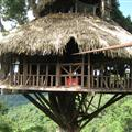 The tree house for the 2nd night. Trying desperately not to drop the camera!!!