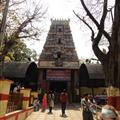 The Bull Temple