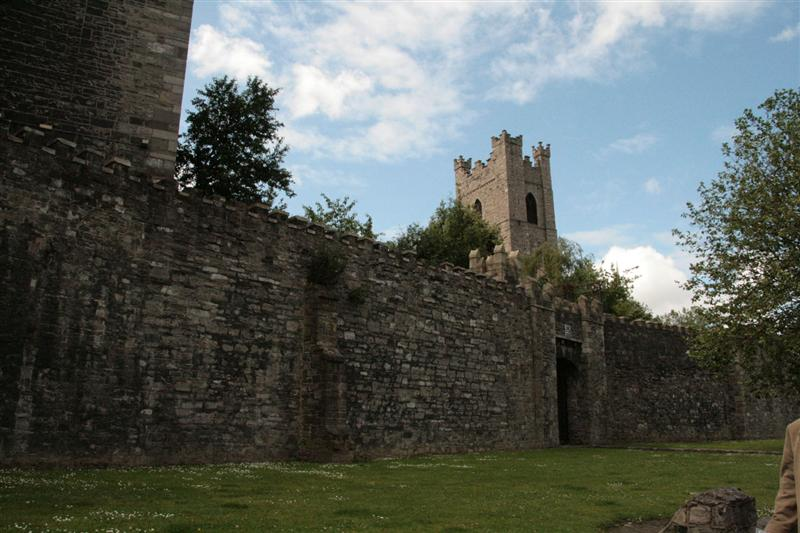 St Audoen's from outside the wall