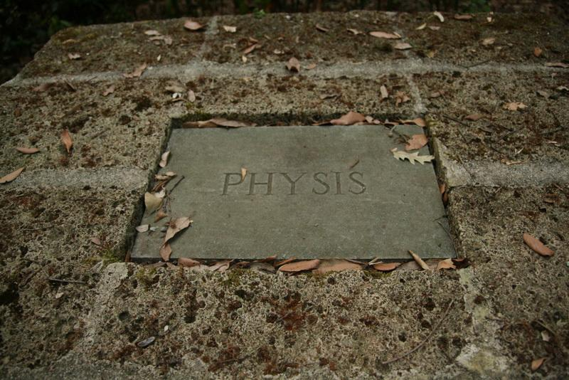 Physis:  nature as the source of growth or change