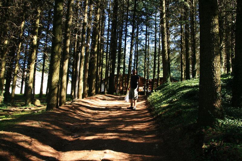 Walking through the woods to the entrance at Radicofani