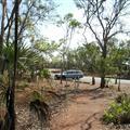 Car in the Termite Lot