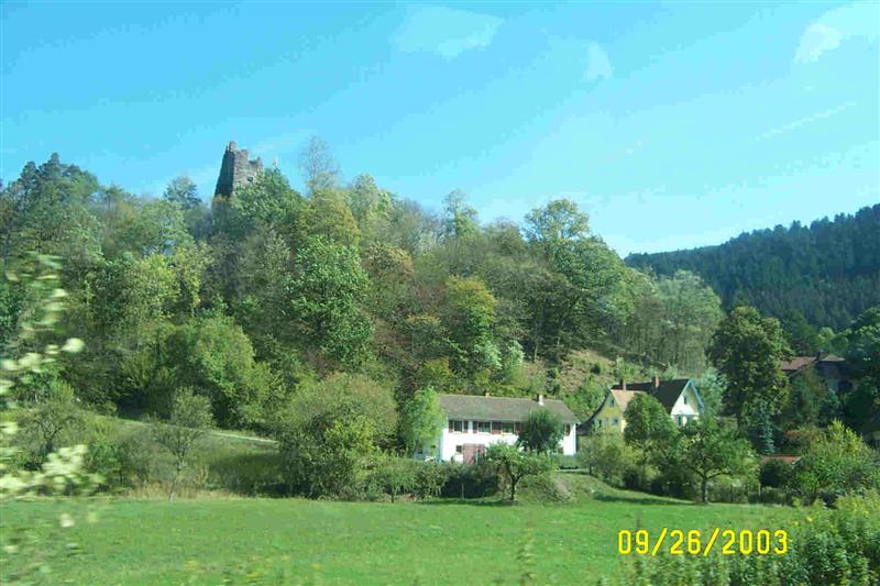 Somewhere in the Black Forest