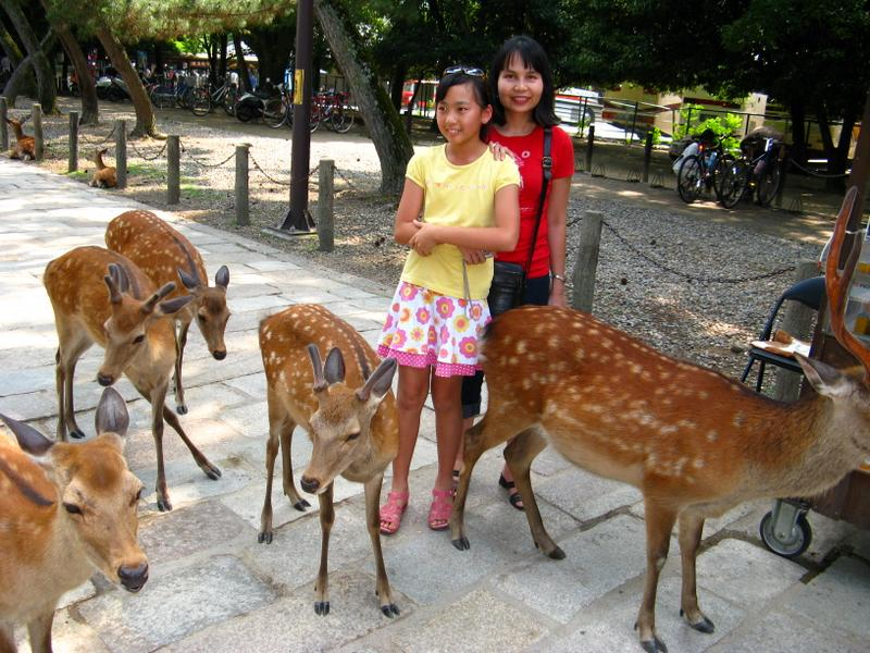 At the Deer Park