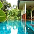 Private swimming pool at Gecko Villa
