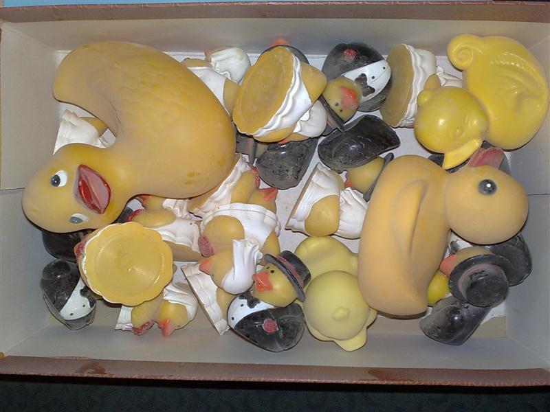 playafied duckies