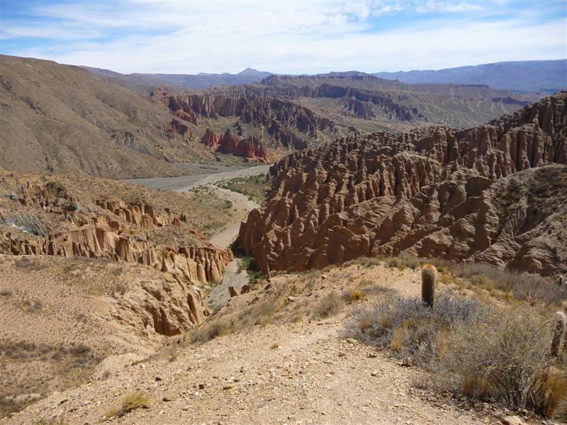 Cacti and jaggy rocks