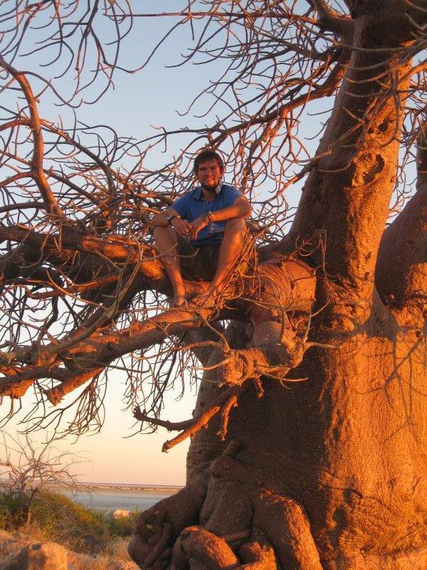 King Of The Baobabs