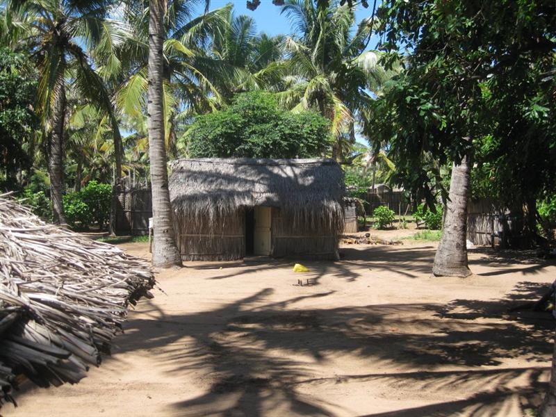 The Witch Doctor's Village