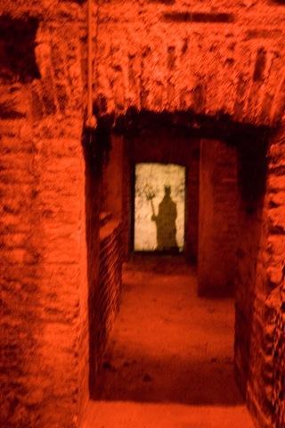 Conch Y Toro - Diablo wine cellar