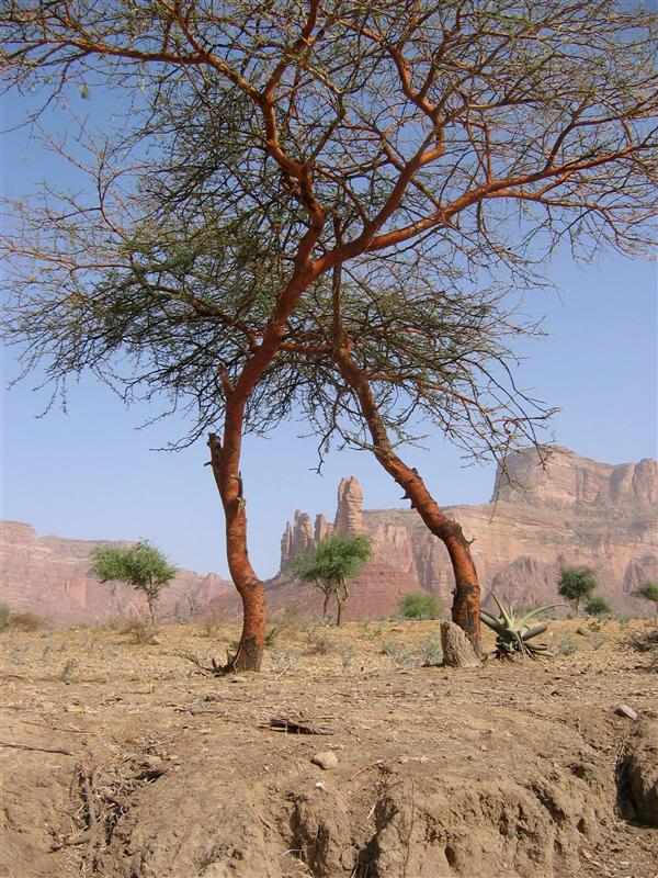 African rocks