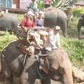 me and Yvonne as the elephant goes into the river