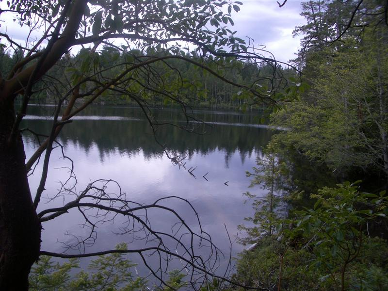 Smaller lake on Nelson Island